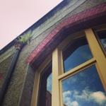 Abbortsford Convent window