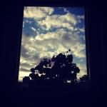 Abbortsford Convent windows 2
