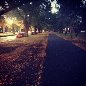 Walking home, Princes Park