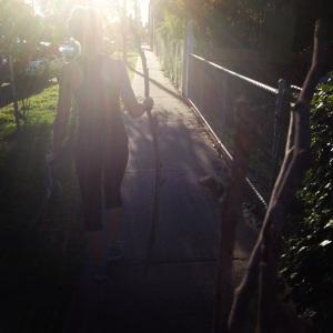 Stick hunting sunshine