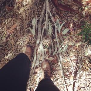 Sticks at feet